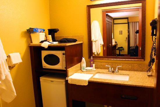 Clarion Inn Lake Buena Vista: banheiro