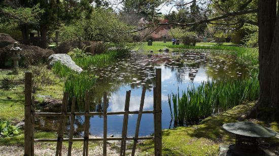 Entering the Japanese Stroll Garden