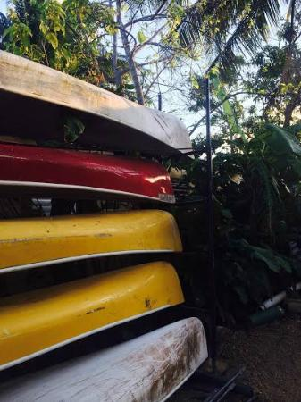 Chaleanor Hotel: Canoes in the backyard