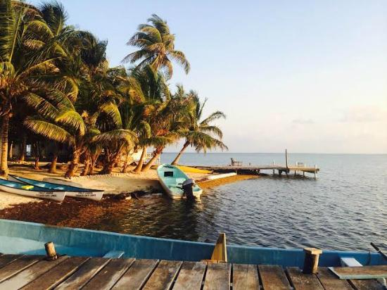Tobacco Caye Lodge: Dock