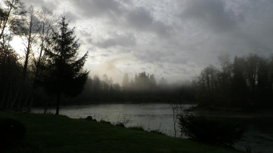 Quillayute River Resort : The view looking towards The convergence of the Sol Duc River and Quillayute River.