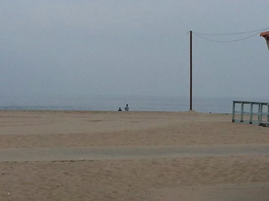 Dockweiler Beach RV Park : Took this picture from my camper.