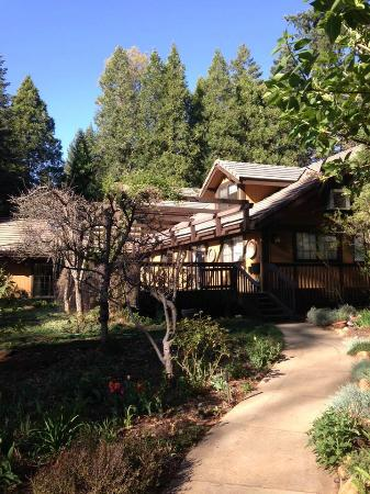Harmony Ridge Lodge: The Lodge