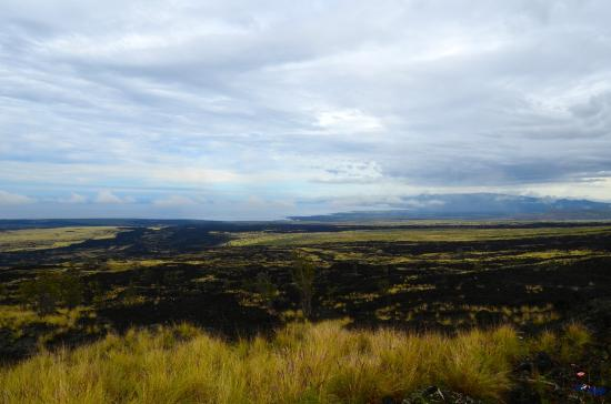 Parker Ranch : The lava fields of Hawaii's north side
