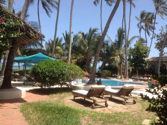 Diani Blue: View of the pool