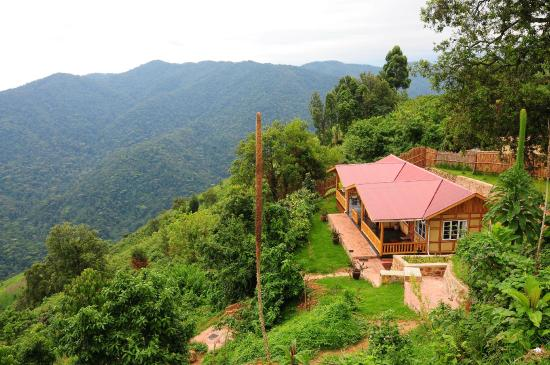 Nkuringo Bwindi Gorilla Lodge: Family Cottage