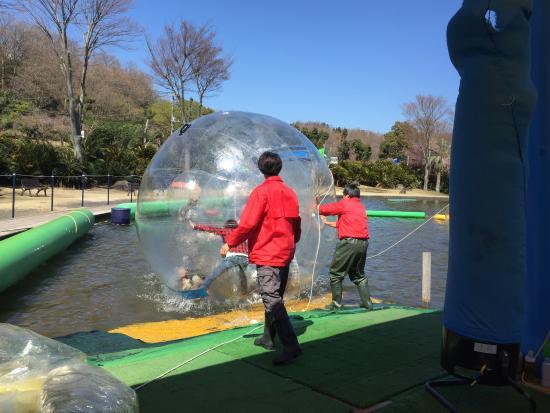 Izu Granpal Park: 料金高いですが、爆笑しました