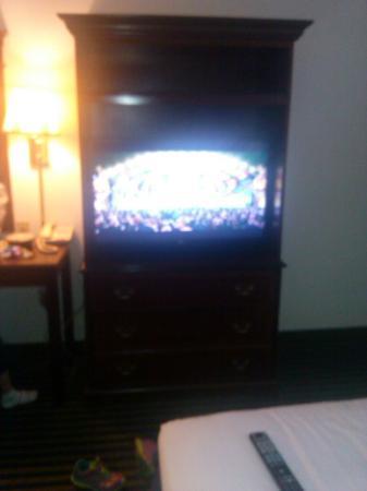 Baymont Inn and Suites Milpitas/San Jose : TV