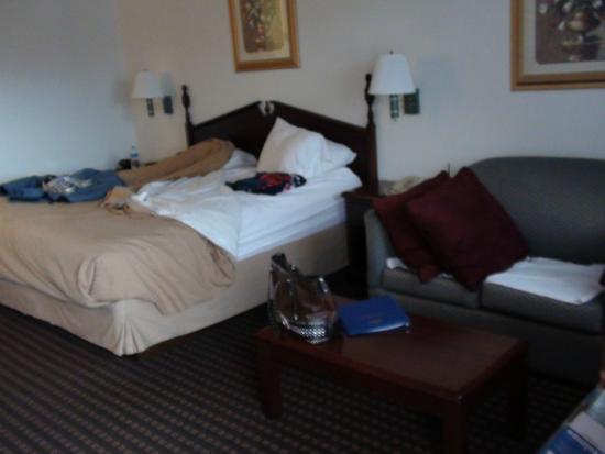 Best Western Johnson City Inn: Room