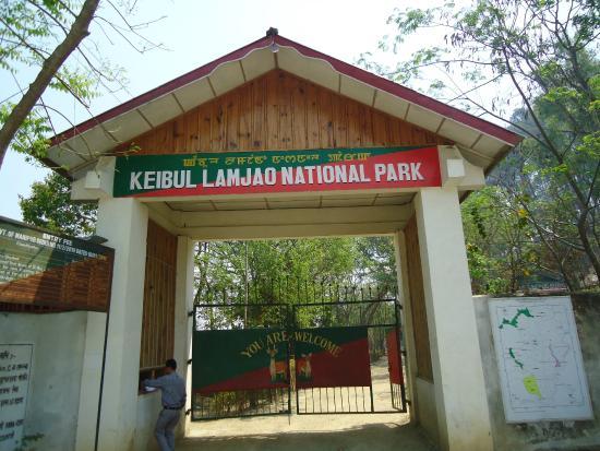 Bishnupur District, อินเดีย: The Park.