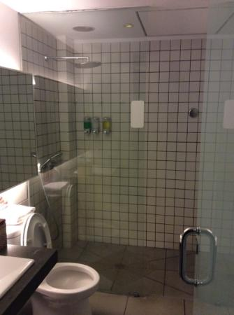 Hummingbird : Decent and clean shower room