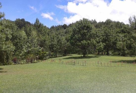 Casa Gaia: jardines del hotel