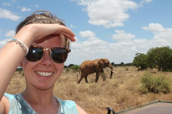Ukunda, Kenia: African Bush & Beach Adventures - Day tours