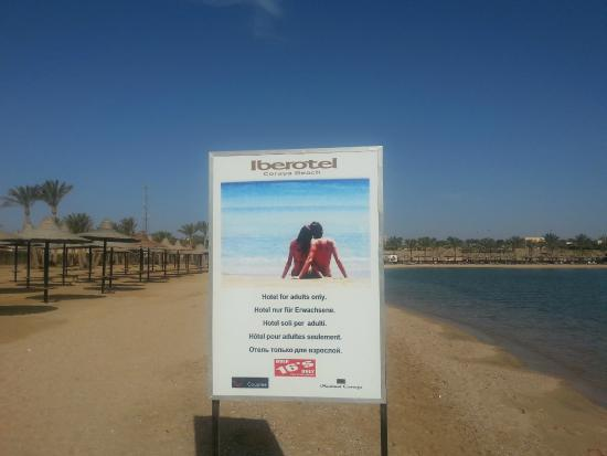 buying now authorized site new styles adults only - Picture of Steigenberger Coraya Beach, Marsa ...
