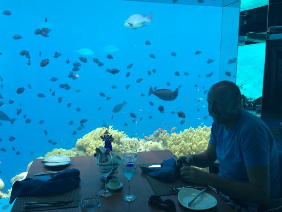 Kihavah Huravalhi: Lunch in Sea, underwater restaurant