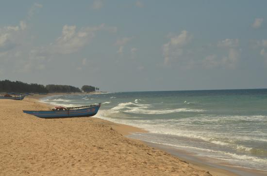 Batticaloa, Sri Lanka: Fishing Boats