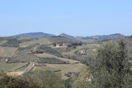 Cantalici : Просторы вокруг винодельни
