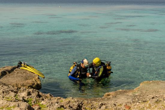 Cueva de Pesces : Einstieg bei El Cenote / Cueva de los Peces