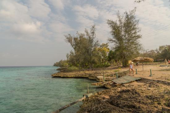 Cueva de Pesces : Dive Place El Cenote / Cueva de los Peces