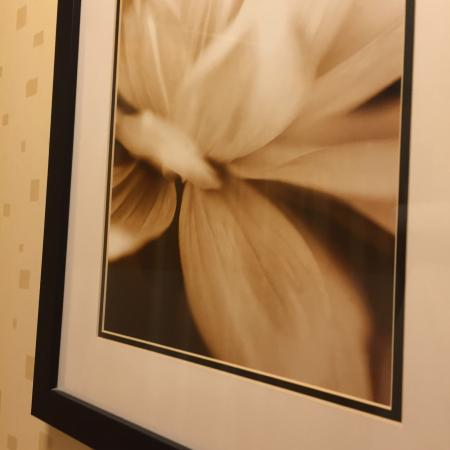 SpringHill Suites Colorado Springs South: Cool painting