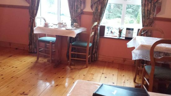 Blarney Vale Bed and Breakfast