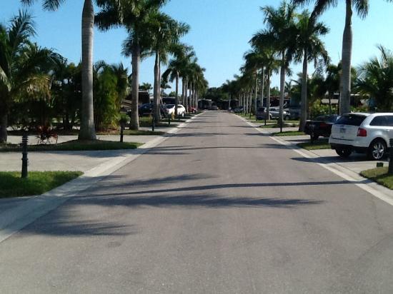 Naples Motorcoach Resort : Main Street in the resort