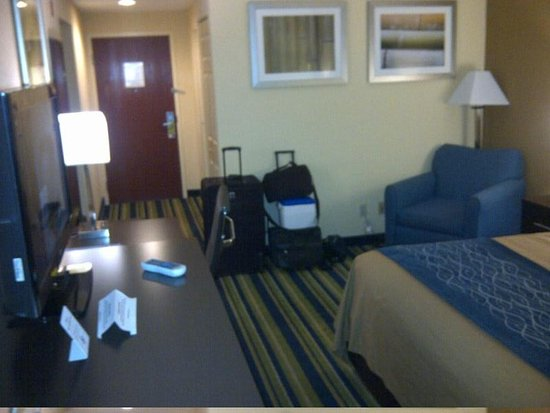Comfort Inn & Suites Lantana - West Palm Beach South: Comfort Inn and Suites - Lantana
