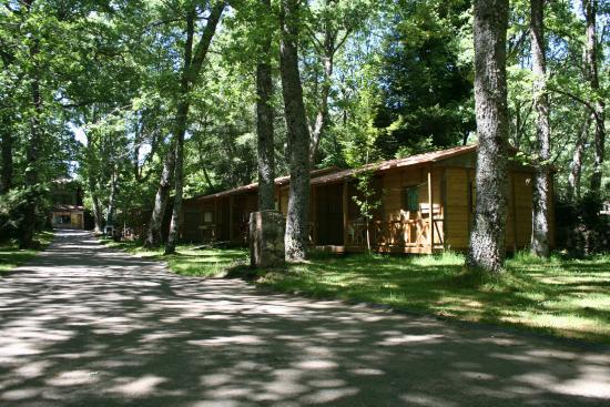 bungalows - bild von camping sierra de francia, nava de francia