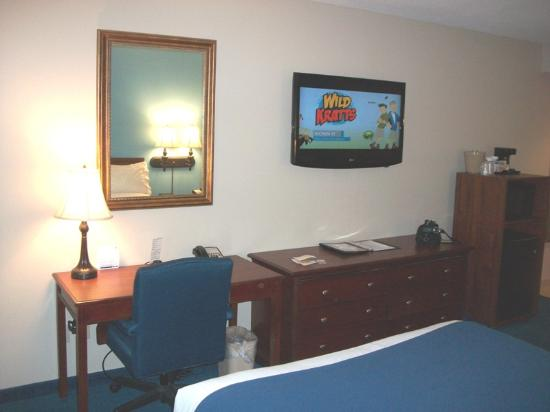 Holiday Inn Express Clearwater East - ICOT Center: Holiday Inn Express - Clearwater