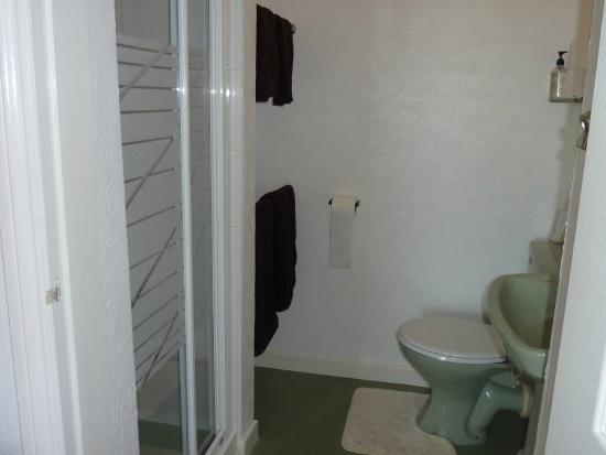 The Trotwood Guest House: Ensuite bathroom of Room 9