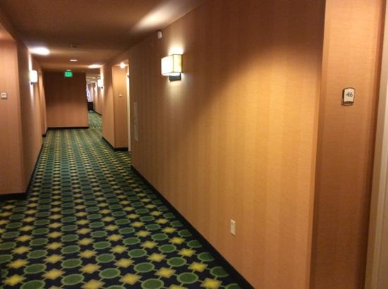 Fairfield Inn & Suites Rockford: hallway