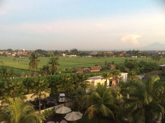 Umalas Hotel and Residence: View from 329