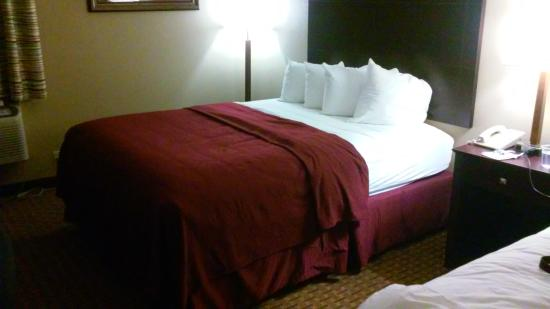 Quality Inn Pensacola: The one big positive - clean, comfy bed