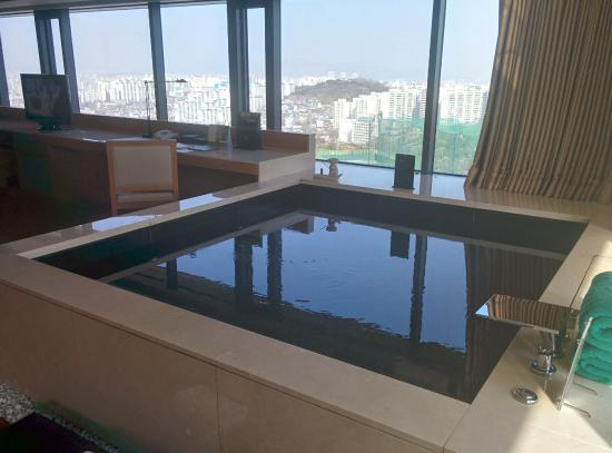 Banyan Tree Club & Spa Seoul: View during the day