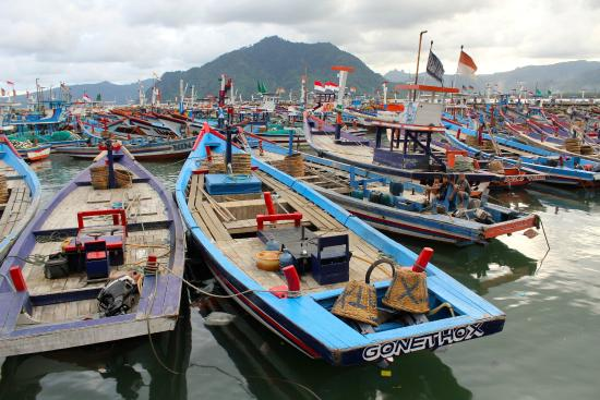 ‪‪East Java‬, إندونيسيا: Fishing boats, Pantai Prigi‬