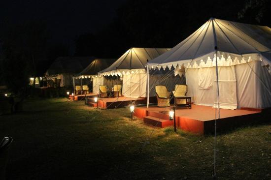 Jungle View Resort Tents at night. & Tents at night... - Picture of Jungle View Resort Sawai Madhopur ...