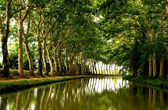 Le Canal a Velo - La Maison du Velo