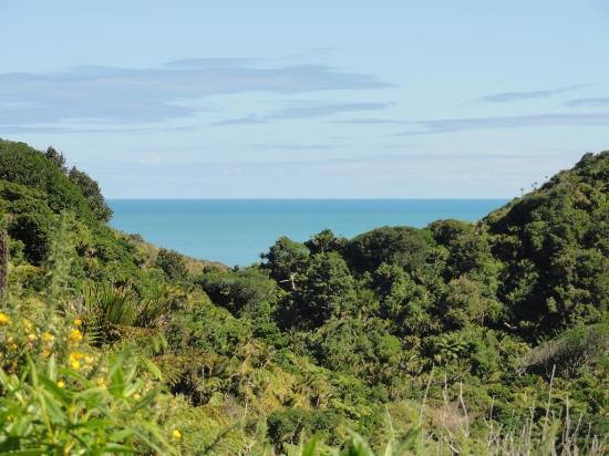 นิวพลีมัท, นิวซีแลนด์: View from the walk looking north