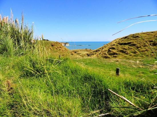 นิวพลีมัท, นิวซีแลนด์: View from the walk looking south
