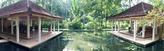 Jiwa Damai Organic Garden & Retreat照片