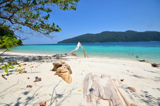 Tarutao National Marine Park : koh rawi