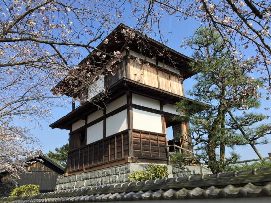 Tanaka Castle: 本丸櫓と桜。
