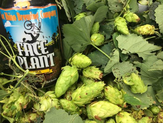 Lost Rhino Brewing Company: Face Plant uses LOCAL hops!  Crazy!  Must Try!
