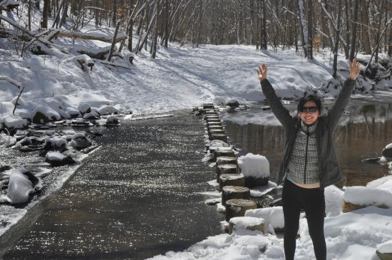 Scott's Run Nature Preserve: Successfully crossing the icy pylons
