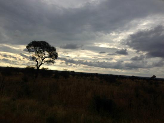 Marc's Treehouse Lodge: Drive back to Marc's Treehouse from Kruger Wild Game Reserve