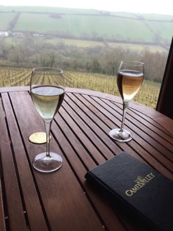 Camel Valley Vineyard: sample wine