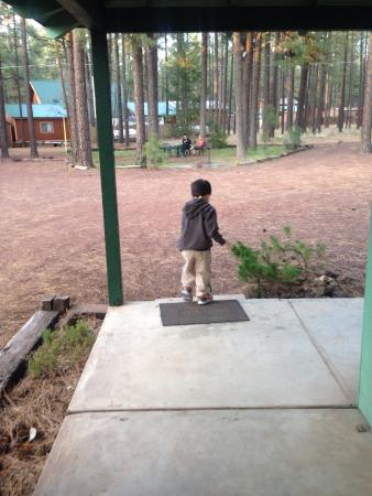 TimberLodge Inn: Perfect place for a kid to play