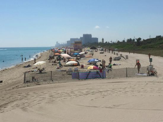 Bal Harbour, FL: Looking South at Haulover Beach
