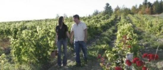 Le Cep D'Argent: La parfaite escapade en amoureux / The perfect lovers' getaway