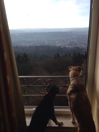 Berghotel Kockelsberg: My girls appreciated the stunning views of Trier from our room.